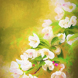 Painted Crabapple Blossoms in the Golden Evening Light by Anita Pollak