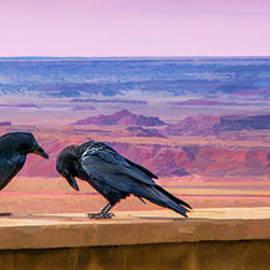 Susan Warren - Painted Desert Pals