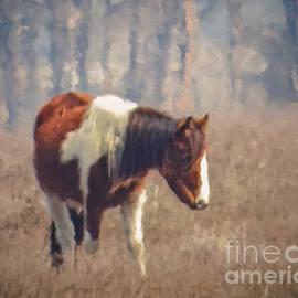 Dawn Gari - Painted Pony