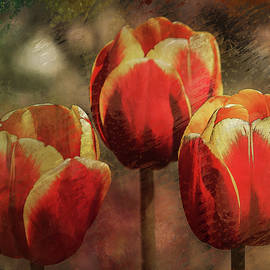 Painted Tulips by Richard Ricci