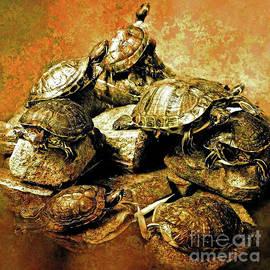 KaFra Art - Painted Turtles