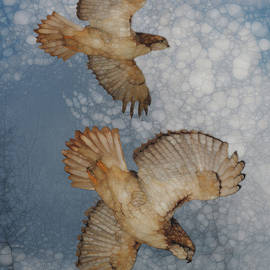 Jack Zulli - Pair In Flight