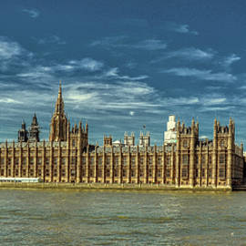 Palace of Westminster by Andrew Wilson