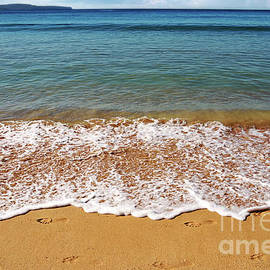 Palm Beach Tranquility by Kaye Menner