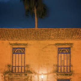 Joan Carroll - Palm Tree Dawn Havana Cuba