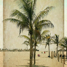 Palm Trees at the Point by Colleen Kammerer