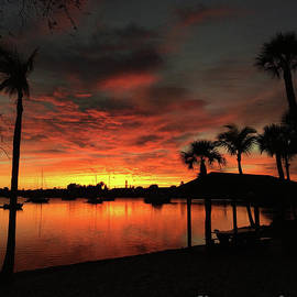 Clay Cofer - Palms and a Mirror at Sunset