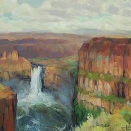 Palouse Falls  by Steve Henderson
