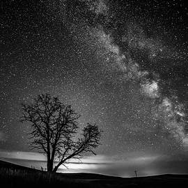 Bob Neiman - Palouse Night Sky and Tree 3919