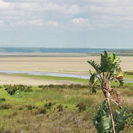 Ronel BRODERICK - Pano Cape Vidal South Africa
