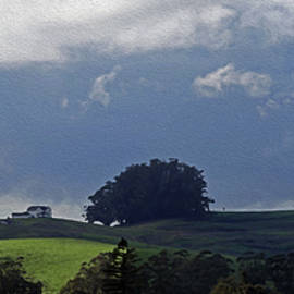 Pano - Spring Hillside