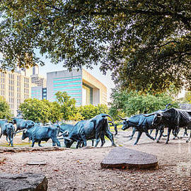 Silvio Ligutti - Panorama of Cattle Drive at Pioneer Plaza in Downtown Dallas - North Texas