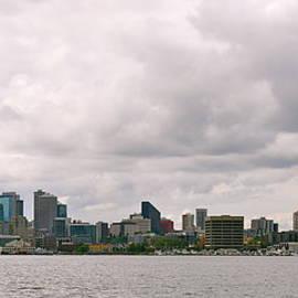 Panoramic Seattle by Caroline Reyes-Loughrey