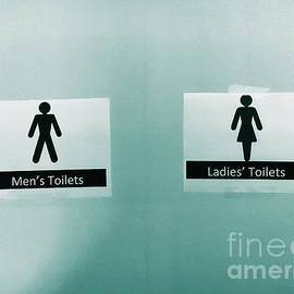 Paper Toilet signs - Tom Gowanlock