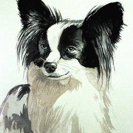 Papillion by Christopher Shellhammer
