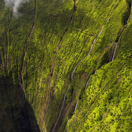 Paradise Falls by Dustin  LeFevre