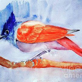 Paradise Flycatcher by Jasna Dragun