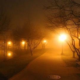 Michael Rucker - Park Fog