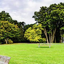 Park Panorama by William Norton