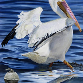 Phyllis Beiser - Pasquale Le Pelican