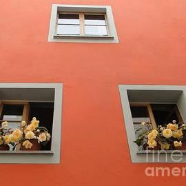 Barbie Corbett-Newmin - Passau Window Boxes
