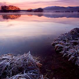 Pastel Dawn by Mike  Dawson