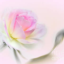 Pastel Passion by Kaye Menner