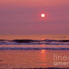 D Hackett - Pastel  Pink Sunrise