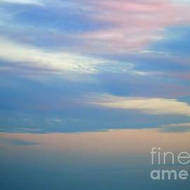 Pastel Sky At Ponce Inlet Beach by D Hackett