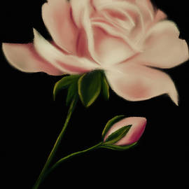 Pastel Tea Rose by Michele Koutris