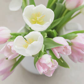 Kim Hojnacki - Pastel Tulips