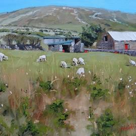 Laura Lee Zanghetti - Pastures of Ireland