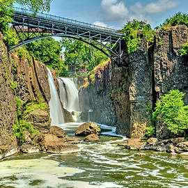 Paterson Water Falls by Geraldine Scull