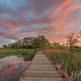Darlene Smith - Path to Sunset
