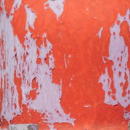 Bill Tomsa - Patina in Reds