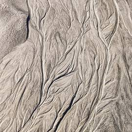 Patterns In Sand At Baird Glacier Outwash by NaturesPix