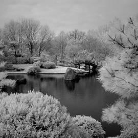 Peace and Harmony Bridge by Jane Linders