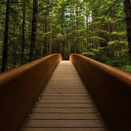 Dustin  LeFevre - Peace Bridge