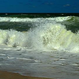 Dianne Cowen - Peace of Mind - Cape Cod National Seashore