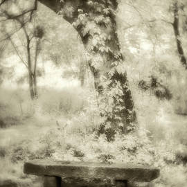 Peaceful Rest-sepia by Joye Ardyn Durham