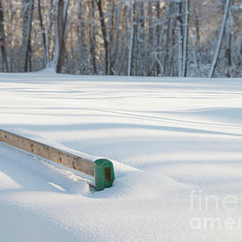 Elizabeth Dow - Peaceful Winter Snow
