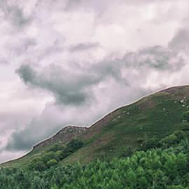 Martin Newman - Peaks