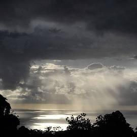 Heidi Fickinger - Pearlescent Hawaiian Sunrise