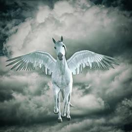 Ramon Martinez - Pegasus V