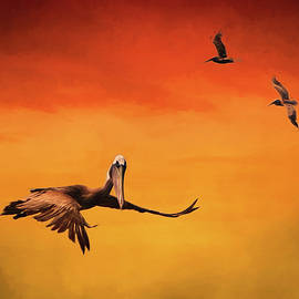 Amy Jackson - Pelican Heaven