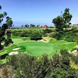 Pelican Hill #california #instaprints