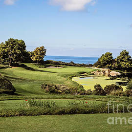 Scott Pellegrin - Pelican Hill No. 7