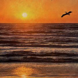 Patti Deters - Pelican Sunrise