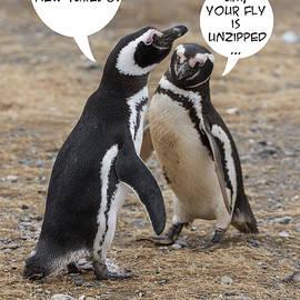 Penguin Funnies 07 by John Haldane