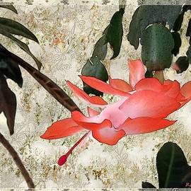 RC deWinter - Penny Postcard Japonaise